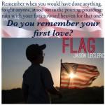 Flag glasses